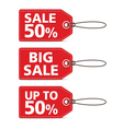 RED TAG SALE vector image