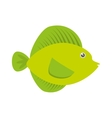 tropical fish sea life vector image