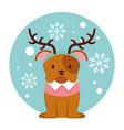 dog merry christmas card vector image vector image