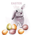 easter bunny rabbit watercolor cute spring vector image vector image