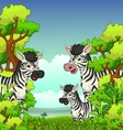 Family of Zebra cartoon with forest background vector image vector image
