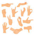 hands in various gestures flat design modern vector image