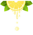 lemon slice with juice drops juicy citrus fruit vector image