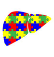 liver with puzzle red blue green yellow vector image vector image