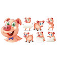 pigs in different positions vector image vector image