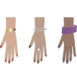 woman hands with accessories vector image