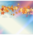 Beautiful autumn sky vector image vector image