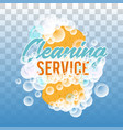 clraning service logo or badge realistic vector image vector image