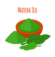 matcha tea drink powder leaves of asian tea vector image vector image