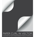 Paper Page Curl with Shadow Isolated vector image vector image