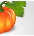 pumpkins backdrop vector image vector image