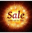 Sale banner on abstract explosion background vector image