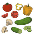 sketched tomatoes cucumbers mushrooms and sweet vector image vector image