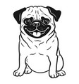pug dog black and white hand drawn cartoon vector image vector image