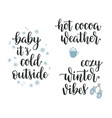 winter inspirational calligraphy set vector image