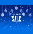 winter sale background with christmas balls and vector image vector image