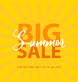 big summer sale sign with retro pop art halftone vector image vector image