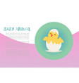 cute bachick just hatched from an easter egg vector image