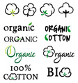 Organic cotton design elements vector image