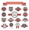 Premium quality labels and badges collection vector image