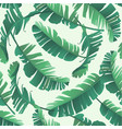 banana palm leaves seamless tropic pattern vector image