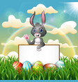 cartoon bunny holding blank sign on the field vector image vector image