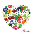 heart made of various berries vector image