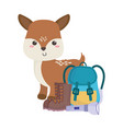 camping cute little deer backpack flashlight boots vector image vector image