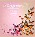 Colorful vintage summer background with butterfly vector image vector image