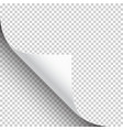 curled page corner with shadow on transparent vector image vector image