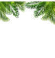 frame with green palm leaf isolated white vector image vector image