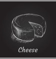 head of cheese hand drawn vector image vector image
