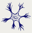 Neuron vector image