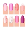 Female manicure set French manicure style as vector image