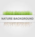 Abstract nature background Green grass vector image vector image