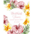 anthurium and plumeria tropic flowers vector image vector image