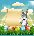 easter bunny near paper scroll and easter egg vector image vector image