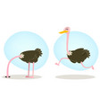 ostrich running and hiding head vector image vector image