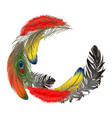 round half frame formed by feathers with space for vector image