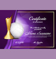 volleyball certificate diploma with golden cup vector image vector image