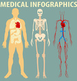 Medical infographic of human body vector image vector image