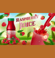 raspberry juice bottle with splash on wooden table vector image
