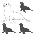 set black and white with fur seal vector image vector image