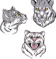 Set of wild cats vector image vector image