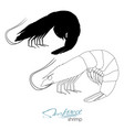 silhouette shrimp linear silhouette shrimp vector image vector image