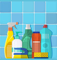 the bottles of detergent washing powder vector image vector image