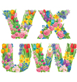 Alphabet of flowers WVUX vector image vector image