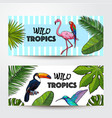 Banners with exotic tropical birds palm leaves