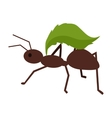 Brown Ant with Green Leaf vector image vector image
