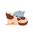 cozy pet friends concept grey cat sleaps on dog vector image